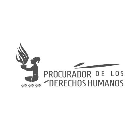 Procurador de los Derechos Humanos
